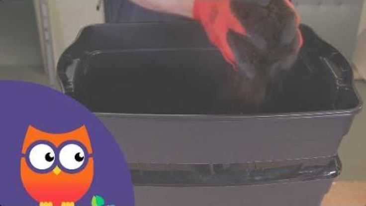 Même si vous habitez en appartement, rien ne vous empêche de recycler vos déchets organiques et les transformer en compost et en «lombrithé» précieux pour vos plantes. Il suffit de vous équiper d'un lombricomposteur abritant des vers de terr