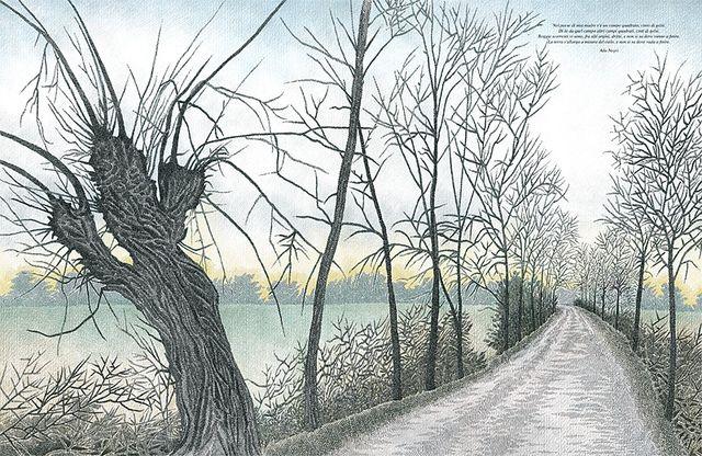 """Pia Valentinis and Mauro Evangelista illustration for """"Raccontare gli alberi""""."""