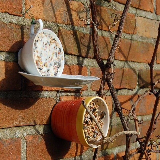 bird feed in cup & saucer