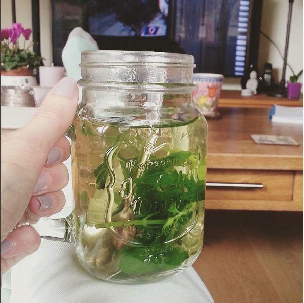 Sinds ik muntthee ontdekt heb, heb ik een tijdje weinig andere thee meer gedronken. Vooral toen ik verse munt bij de Lidl tegen kwam. Die week heb ik een flink aantal koppen muntthee gedronken. Gel…
