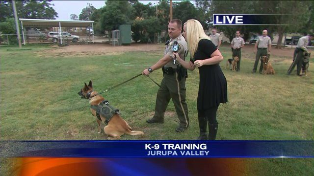 Riverside County Sheriff's Department K9 Training facility: Adlerhorst International, Inc.
