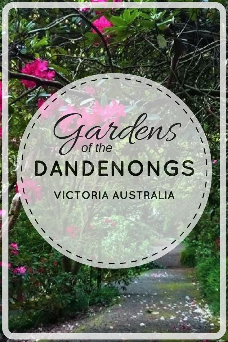 Fabulous gardens of the Dandenong Ranges. Alfred Nicholas, George tindale, The National Rhodendron Gardens, William Ricketts Sanctuary, Cloudehill & Pirianda Gardens.