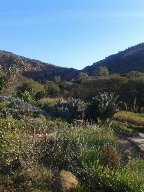 Walter Sisulu Botanical Gardens ♥ #Roodepoort