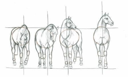 How to Draw Horses with Eva Dutton