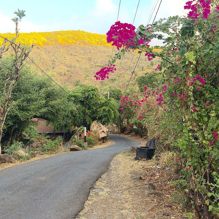 Pretty local road in Selang, Amed