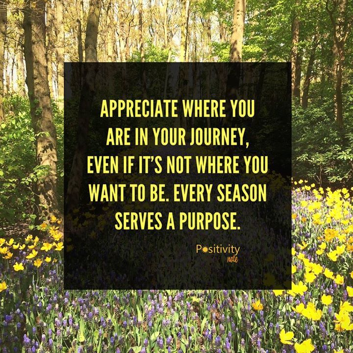 Appreciate where you are in your journey even if its not where you want to be. Every season serves a purpose. #positivitynote #positivity #inspiration