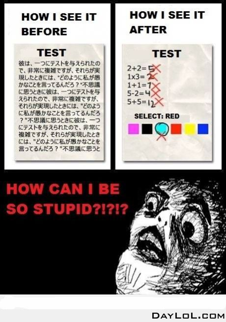 What is your opinion on tests in school?