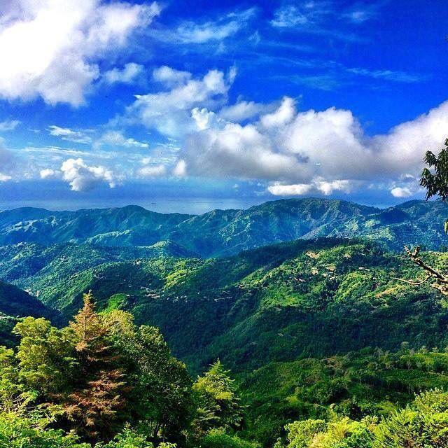 Blue Mountain Jamaica