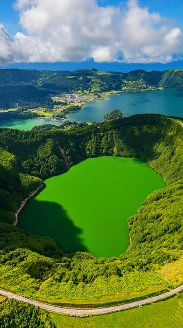 Ilha de São Miguel... É a maior das ilhas do arquipélago dos Açores e a maior de todas as ilhas integrantes do território de Portugal, com cerca de 64 km de comprimento e 15 km de largura, sua paisagem vulcânica está coberta com uma vegetação verdejante, por nascentes de água quente. As estradas costeiras sinuosas estão alinhadas com hortênsias vermelhas e azuis gigantes.