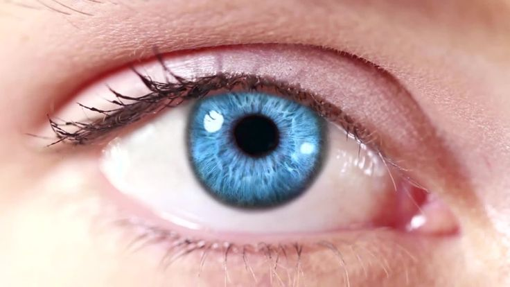 Glaucoma-Cure costosissime? My Crowd!