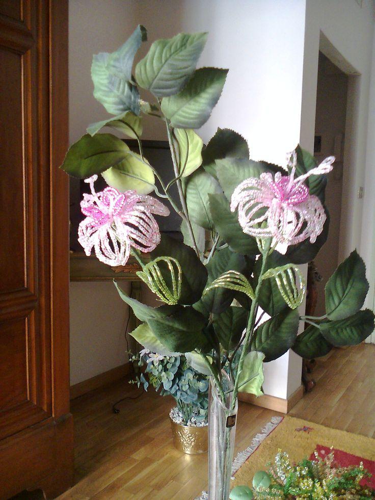 Fiori di perline iris piante e fiori di perline for Catalogo piante e fiori