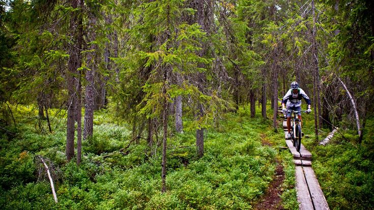 Mountain biking in Finland