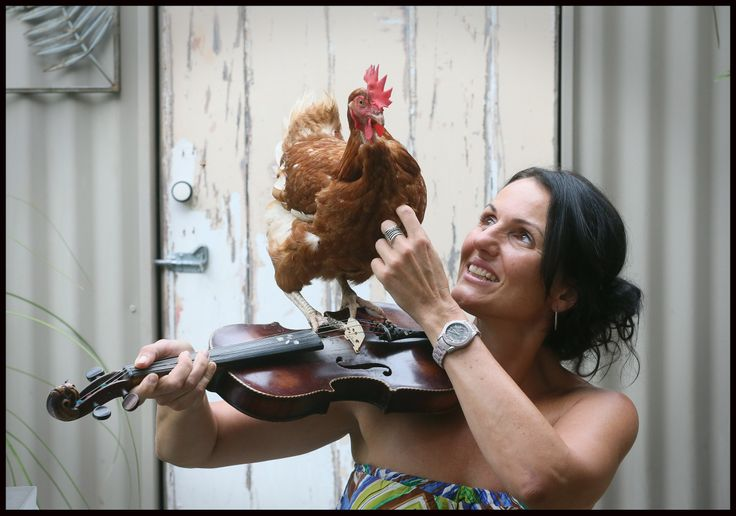 My beautiful chicken and how she loves to listen to music and lays all those delicious golden centred eggs.