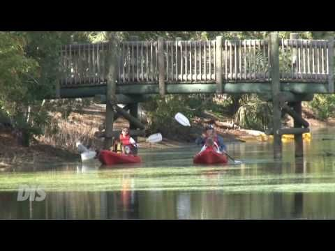 full hookup sites at fort wilderness Disney's fort wilderness resort & campground nestled in a serene forest, disney's fort wilderness cabins offer a quaint,  full hookup (electric, water, .