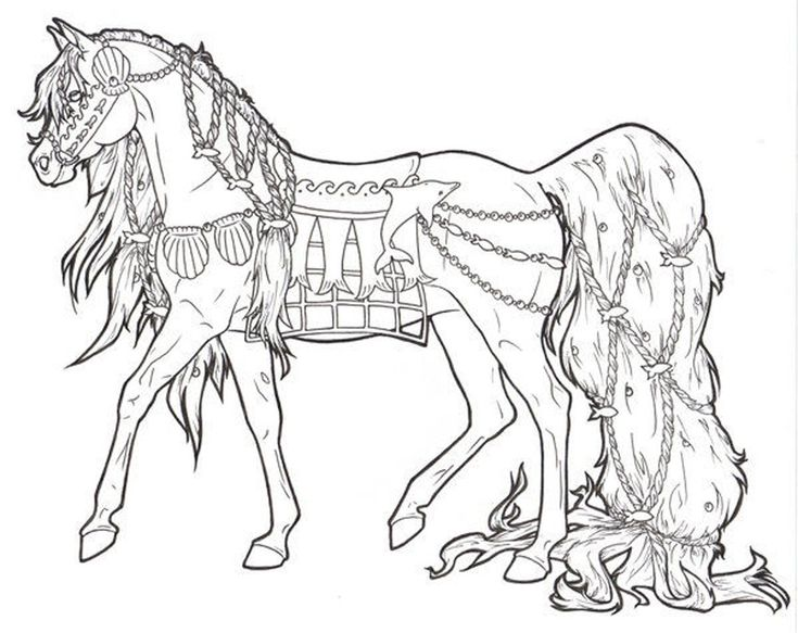 Horse With Long Ponytail In Horses Coloring Page