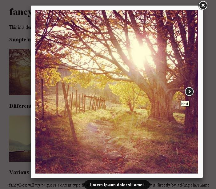 Το FancyBox slider είναι ένα εργαλείο για να παρουσιάζουμε εικόνες, περιεχόμενο html αλλά και multi-media με ένα πολύ εντυπωσιακό τρόπο Mac-style «lightbox» που εμφανίζεται πάνω από το περιεχόμενο της σελίδας. Το FancyBox slider δημιουργείται χρησιμοποιώντας το jQuery library. Το FancyBox slider έχει τα παρακάτω χαρακτηριστικά: Μπορεί να παρουσιάσει εικόνες, HTML …