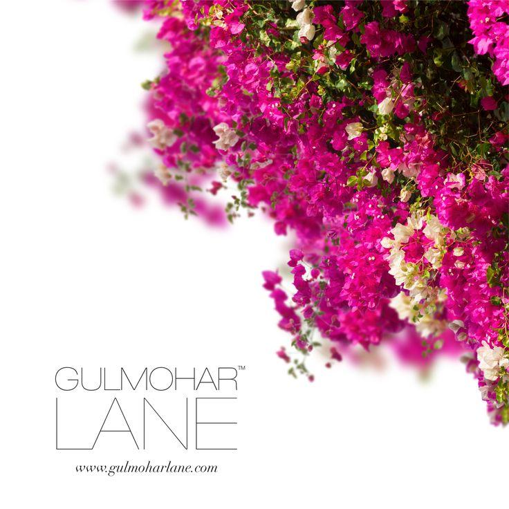Show us some love. Visit us at http://www.gulmoharlane.com/