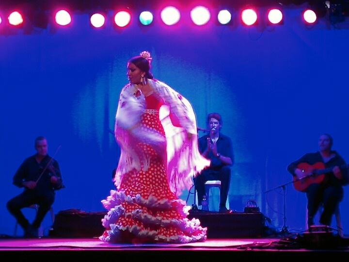 Flamenco Fire