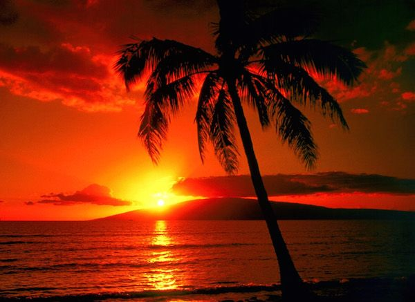 Luna di miele- Tramonto Hawaii.