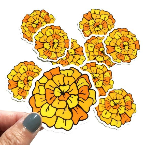 Marigolds Flower Vinyl Sticker Etsy In 2020 Marigold Stickers Marigold Flower Flower Drawing