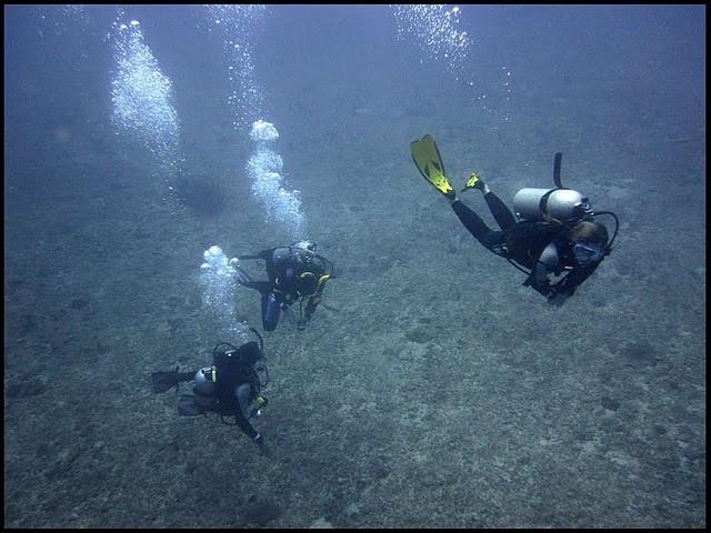 Diving with Kinasi Lodge Staff  in Mafia Island