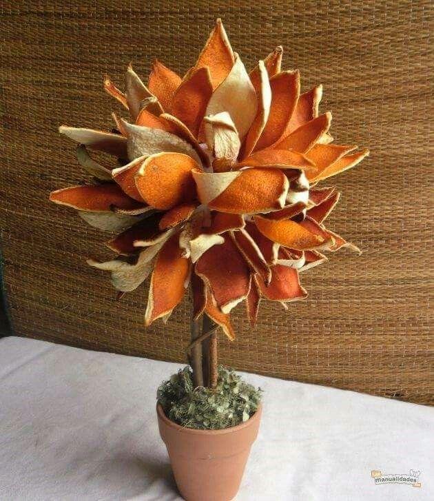 Pomerančový stromek