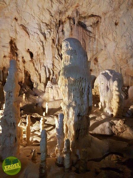 Medve-barlang - Bihari hegység, Erdély | Erdeiprogramok.hu - Élményekben gazdag magyar erdők