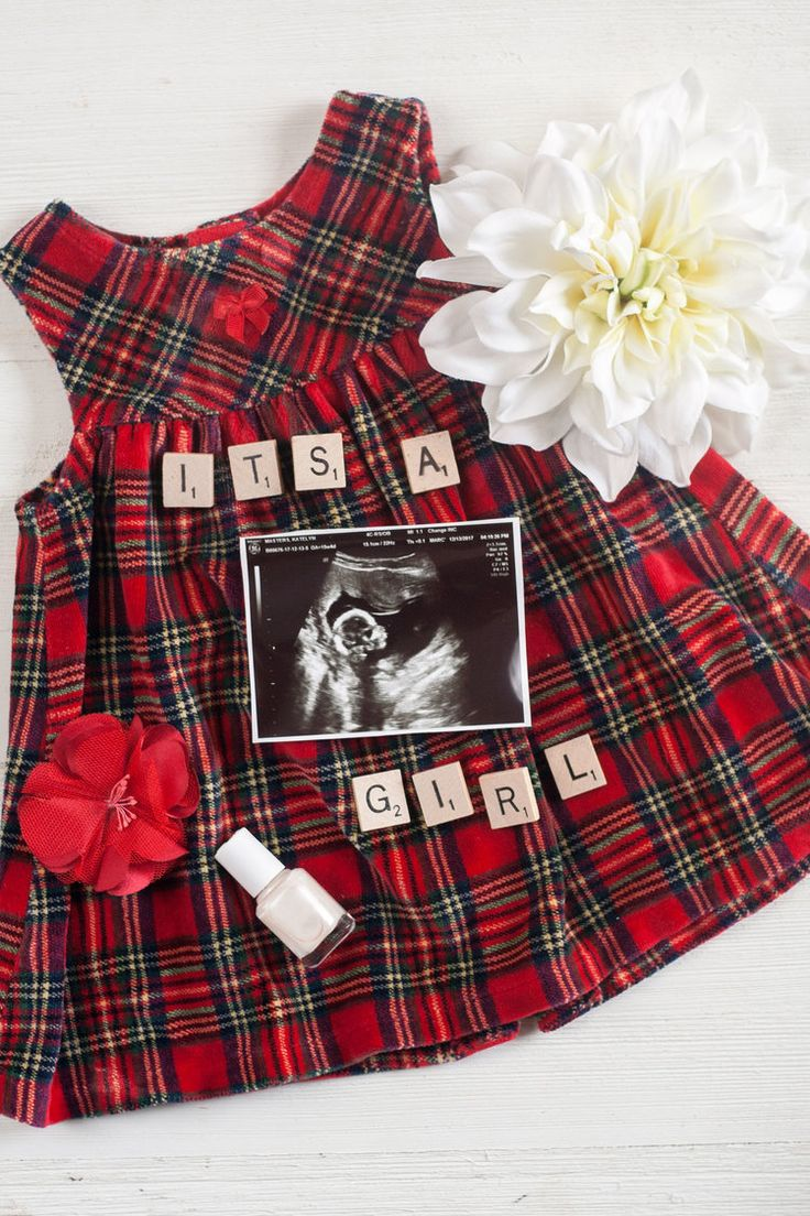 best rainbow baby images on pinterest pregnancy photos