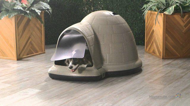 M s de 25 ideas incre bles sobre puertas para perros en for Puertas perros medianos