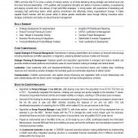 Cv format sample 25 pinterest professional cv format sample yelopaper Images