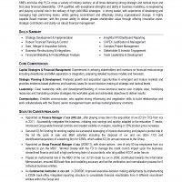 Professional CV format sample