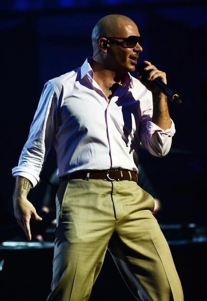 Pitbull #mr305