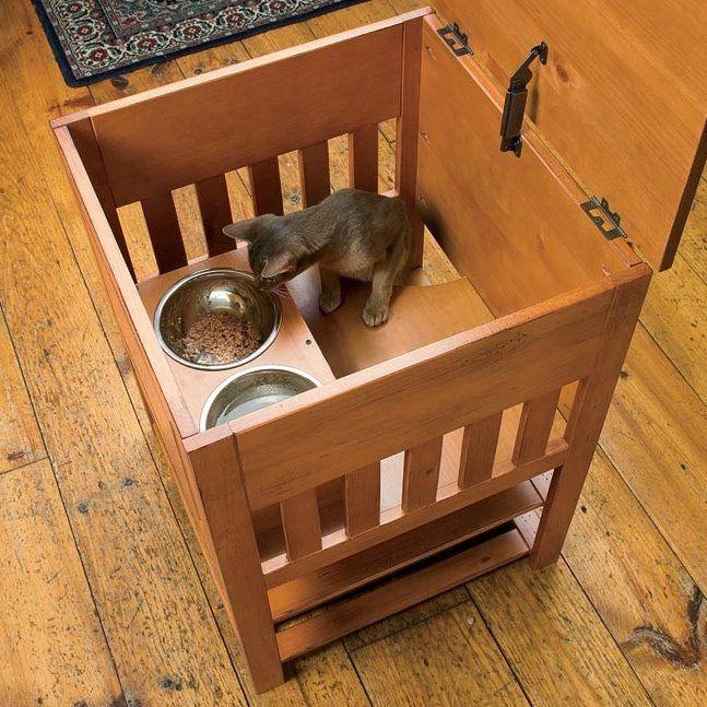 Dog Proof Cat Feeding Station Cat Feeding Station