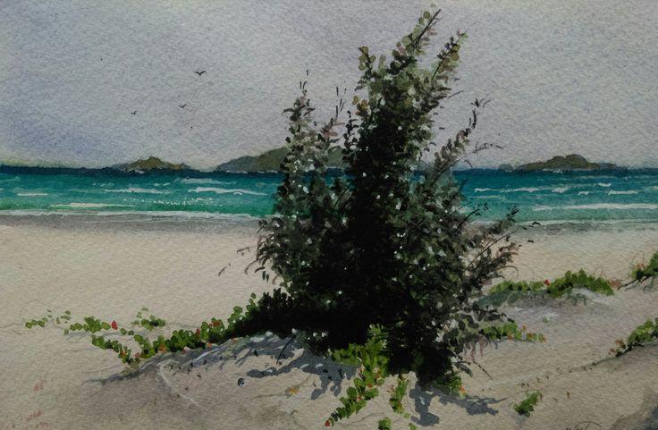 """Coastal Saltbush"" by Brian Dickinson. Paintings for Sale. Bluethumb - Online Art Gallery"