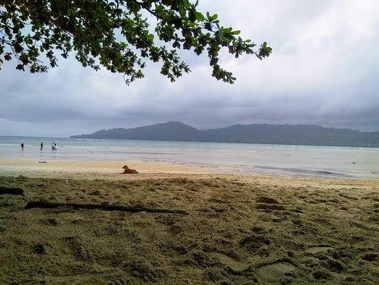 Gambar Pantai Full Hd Di 2020 Pemandangan Pantai Gambar Awan