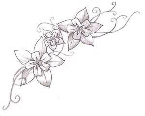 Image Gallery Larkspur Drawing