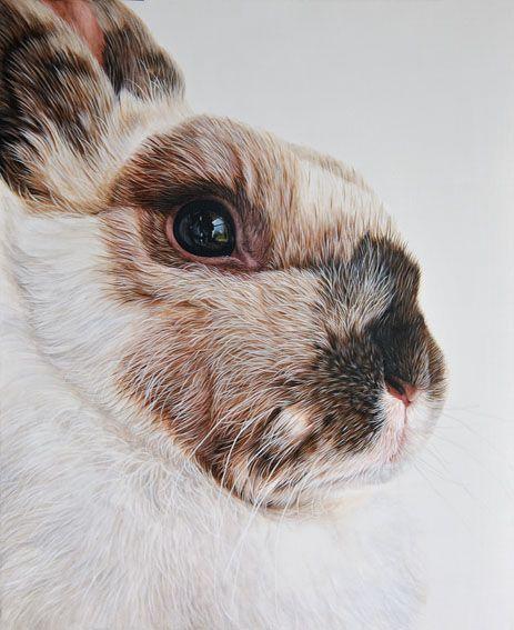Ester Curini | Italian Animal Painter
