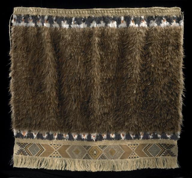 kiwi cloak - Google Search