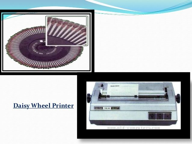 Image Result For Presentation On Daisy Wheel Printer Printer Presentation Daisy