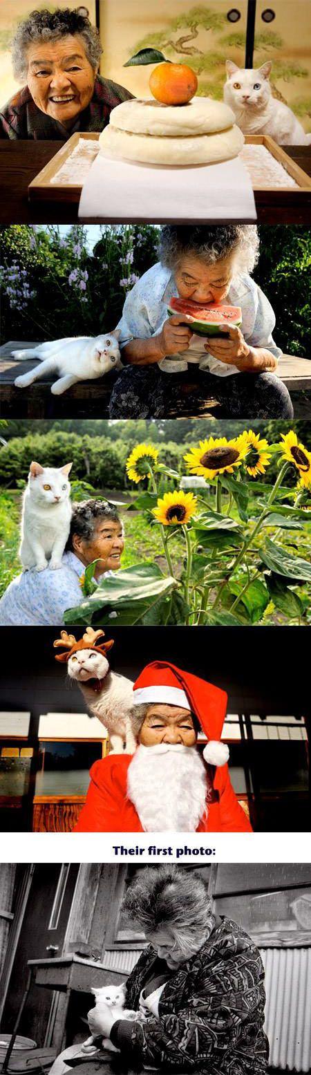cute-Japanese-grandma-cat-friends-first-photo