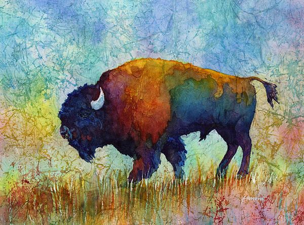 Colorful contemporary buffalo watercolor painting ...