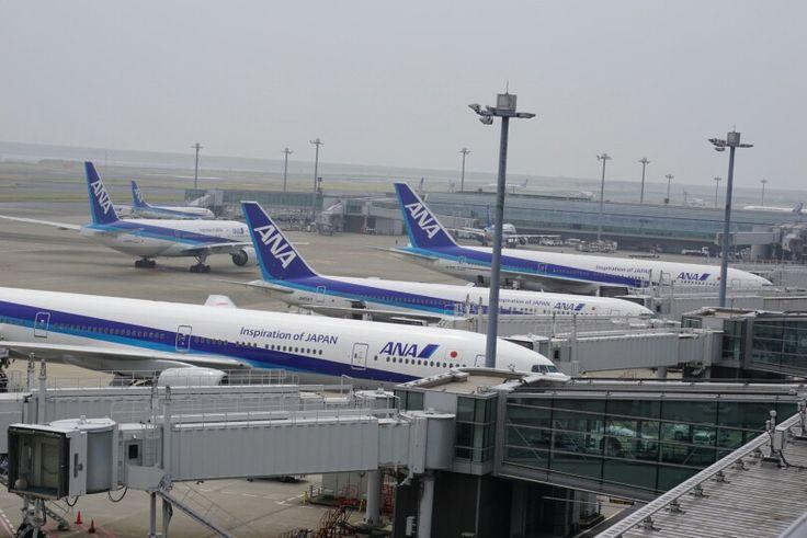 ANA(All Nippon Airways)