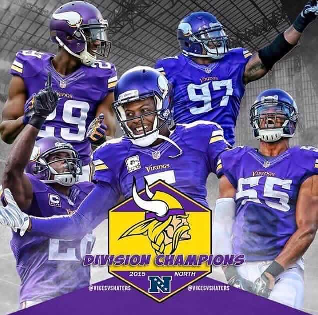 2015-2016 NFL Division Champs