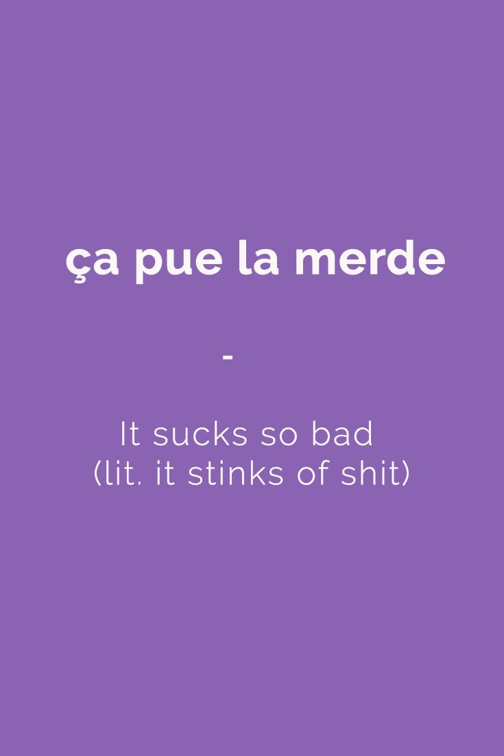 ça pue la merde - It sucks so bad (lit. it stinks of shit). Speak like a native French speaker with French Slang Essentials e-book. More than 600 slang terms and phrases translated. Get it for only $4.90! https://store.talkinfrench.com/product/french-slang-essential/