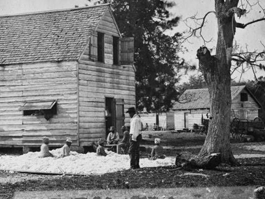 1860 - Cotton Plantation Slaves (O)