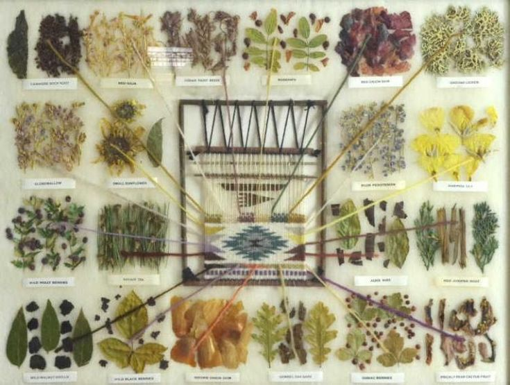Native American, Navajo Sampler of Vegetal Dyes Used in Navajo Weaving, by Vera Myers, #878 by CulturalPatina on Etsy