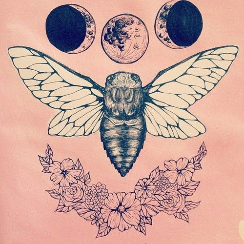 Change the moons to under the moth and erase the flowers, but i still love this