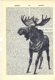 multimedia moose