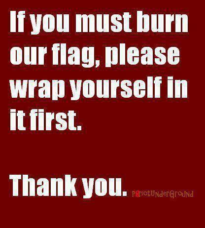 Flag Burning Etiquette