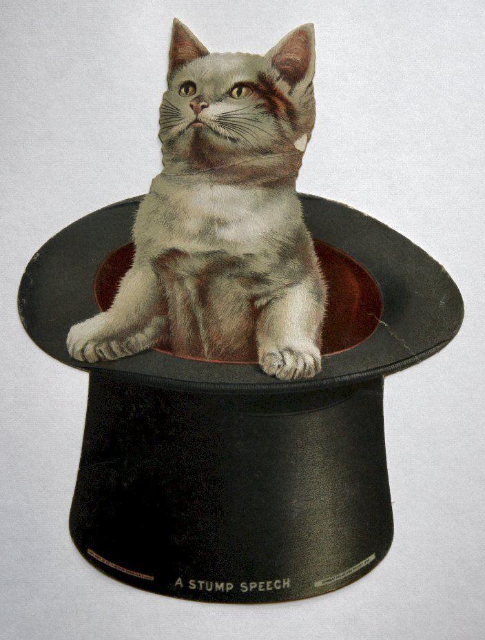 Rare Art Supplement, 1895 Philadelphia Inquirer, Large Die Cut of Cat in Hat..